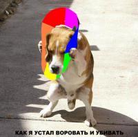 Михаил Ситников